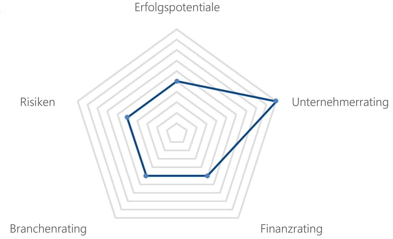 Rating-Kategorien: Erfolgspotentiale, Unternehmerrating, Finanzrating, Branchenrating, Risiken